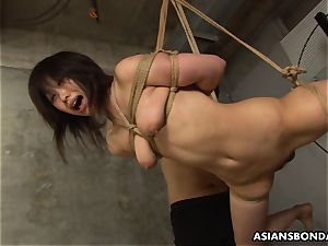 trussed up to a strap and fellating on the fellas